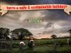 xmas_20130106-img_6077-edit